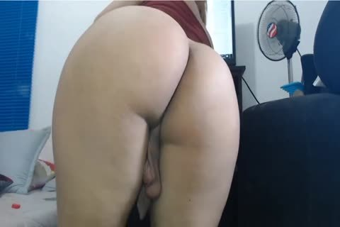 Two Andreas big Round wazoo Latin tranny Latins