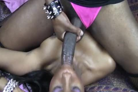 Shemale on Female Shemale Videos for Free - Black Shemale Video